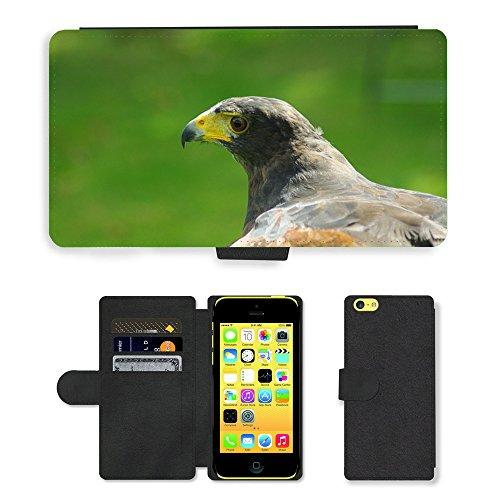 Just Mobile pour Hot Style Téléphone portable étui portefeuille en cuir PU avec fente pour carte//m00139000Hawk Harris d'Oiseaux proie Tête Bec//Apple iPhone 5C