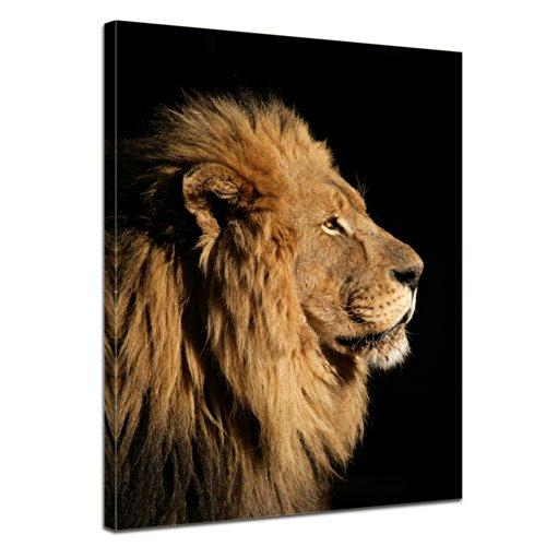 Wandbild - Großer Afrikanischer Löwe - Bild auf Leinwand - 50x60 cm - Leinwandbilder - Tierwelten - Afrika - König - Profilansicht - majestätisch -