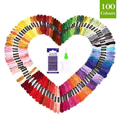 SOLEDI Fils à Broderie Kit 123 Pièces pour Broderie Point de Croix Tricotage Bracelets Brésiliens Fils à Coudre des Outils Accessoires, 100 Couleurs