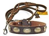 Dean & Tyler Retro Rulz Leder Halsband mit Passenden Braidy Haarschmuck Strauß Leine für Haustiere, 30bis 86,4cm, braun