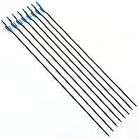 12Pcs 30 inch Tir à l'arc Flèches de Carbone Target Practice Spine 1000