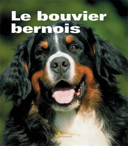 Bouvier Bernois (le) par Alain Fournier