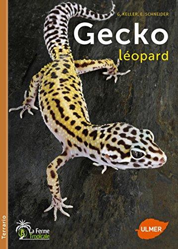 Gecko léopard par G. Keller