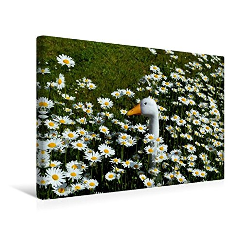 Premium Textil-Leinwand 45 cm x 30 cm quer, Der Vergleich | Wandbild, Bild auf Keilrahmen, Fertigbild auf echter Leinwand, Leinwanddruck (CALVENDO Glaube)