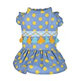 Hawkimin Haustier Kleid Frühling und Sommer Nette Punktierte Quaste Rock Hundekostüme Kleidung Minikleider für Kleine Mittelgroße Haustiere