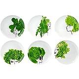 Amatable 37-1K-018 Assiettes plates rondes Les petites salades Coffret de 6 assorties Porcelaine Blanc et vert...
