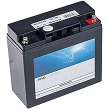 Suchergebnis auf amazon fr rasentraktor batterie ratioparts 101 842 starterbatterie fr rasentraktoren agm 12v 18ah schwarz fandeluxe Gallery
