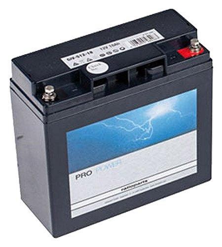Ratioparts 101, 842 Starterbatterie für Rasentraktoren AGM, 12V, 18Ah, Schwarz - 12v Rasentraktor Batterie