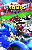 Team Sonic Racing (English Edition)