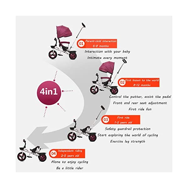 BGHKFF 4 In 1 Childrens Folding Tricycle 6 Months To 5 Years Rear Wheel With Brake Folding Trike 360° Swivelling Saddle Folding Sun Canopy Childrens Tricycles Maximum Weight 25 Kg,Purple BGHKFF ★Material: Steel frame, suitable for children from 6 months to 5 years old, the maximum weight is 25 kg ★ 4 in 1 multi-function: can be converted into baby strollers and tricycles. Remove the hand putter and awning, and the guardrail as a tricycle. ★Safety design: golden triangle structure, safe and stable; front wheel clutch, will not hit the baby's foot; guardrail; rear wheel double brake 2