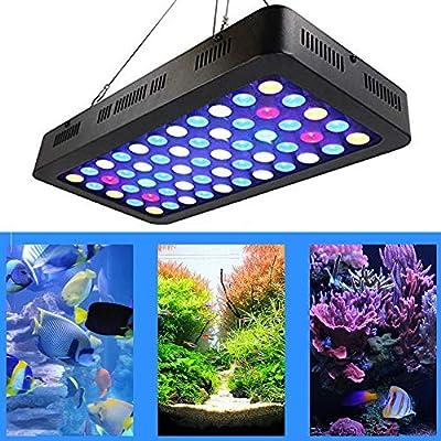 LED Aquarium 165W avec Bouton Dimmable Lampe pour Aquarium,Lampe per Acquarium Poissons/Corail/Plantes Bleu Blanc