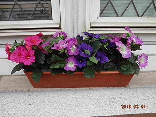 künstliche Petunien x 4 im 60 cm.Balkon- Kasten,braun