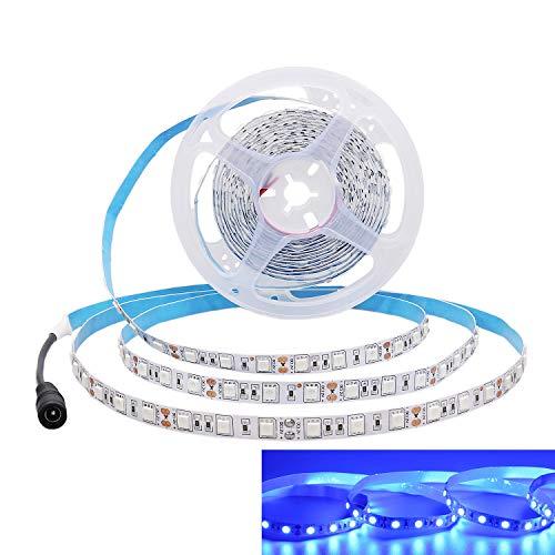 JOYLIT Striscia LED Blu SMD5050 300led IP20 Non impermeabile 5 metri DC 12V di altezza striscia di led per decorazione di armadio da cucina, camera da letto