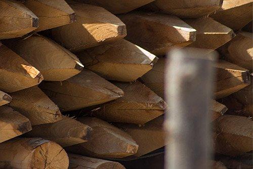 *6 Pfähle / Pfosten aus Kastanie 1,20 m Ø 6-8 cm, ideal für Staketenzaun*