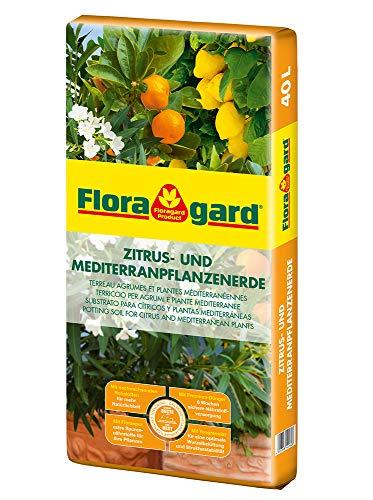 Floragard Zitrus- und Mediterranpflanzenerde 40 L • für mediterrane Kulturen • beispielsweise für Oleander, Oliven-, Feigen-, Limetten-, Orangen- und Zitronenbaum • torfreduzierte Spezialerde