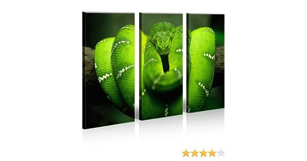 Bild auf Leinwand Grüne Mamba Gift Schlange XXL Poster Leinwandbild Wandbild
