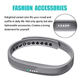 Fit-power Replacement Bands for Fitbit Flex 2,Sports Fitness Accessories Wrist Band for Fitbit Flex 2 Bands Small & Large (2F, Small)