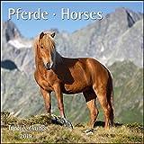 Pferde Horses 2019 - Broschürenkalender - Wandkalender - mit herausnehmbarem Poster - Format 30 x 30 cm
