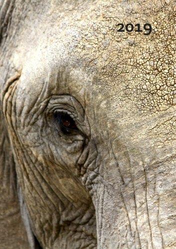 Kalender 2019 - Elefant Eye: DIN A5, 1 Woche pro Doppelseite