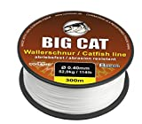 Big Cat Wallerschnur (300m / weiß / 8 fach rundgeflochten), Durchmesser:0.50mm