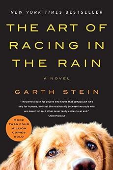 The Art Of Racing In The Rain: A Novel por Garth Stein epub