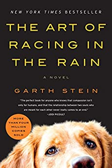 The Art Of Racing In The Rain: A Novel por Garth Stein Gratis