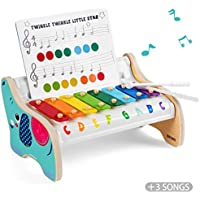 TOP BRIGHT Wooden Xylophone Toy for Toddlers 1 2 Years Old Boys and Girls Baby Gifts, Kids Glockenspiel Musical Instruments for Childrens Two Year Old with Mallets