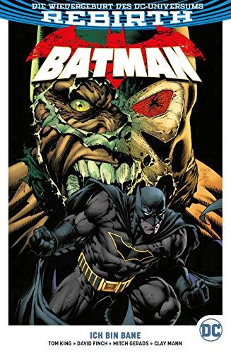 Batman: Bd. 3 (2. Serie): Ich bin Bane - Batman Arkham Robin City