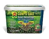 COMPO RasenNeuanlageMix Samen & Dünger, Rasenpflege zum Säen und Düngen in einem Arbeitsschritt, für die gelungene Rasaenneuanlage, 2,4 kg für 100 m²