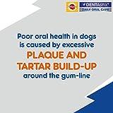 Pedigree DentaStix Hundesnack für mittelgroße Hunde (10-25kg), Zahnpflege-Snack mit Huhn und Rind, 10 Packungen je 7 Stück (10 x 180 g) - 4