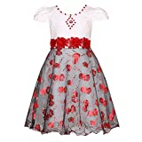 Best Richie House Dress For Kids - Richie House Girls' Party Princess Dress with Flowers Review