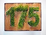 Signes d'adresse personnalisée | Rustique Plaque d'adresse | Plaque en bois teinté de chêne et nombres de cailloux de mer | Cru numéros de maison, panneau d'adresse de la maison