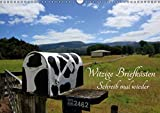Witzige Briefkästen – Schreib mal wieder (Wandkalender 2016 DIN A3 quer): Die witzigsten Briefkästen aus Neuseeland mit coolen Sprüchen (Monatskalender, 14 Seiten ) (CALVENDO Natur)