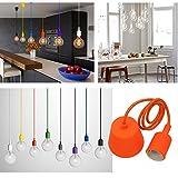 Best IKEA luz Soportes - Princeway Colorido Silicona Lámparas de Techo Colgante- Portalamparas Review