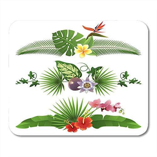 Luancrop Mauspads Bananen-grünes Blatt 3 Tropische Grenzen von den Blättern und von den Blumen-Kokosnuss-Regenwald-Mausunterlage für Notizbücher, Tischrechner-Mausunterlagen, Bürozubehöre