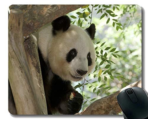 Yanteng Mouse Pad con Borde Cosido, Cepillo de Dientes Fauna Gigante Panda, Alfombrilla para ratón, Base de Goma Antideslizante para computadora portátil