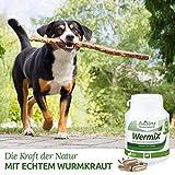 AniForte Wurm-Formel 100 Kapseln- Naturprodukt für Hunde - 3