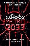 Metro 2033 (English Edition)