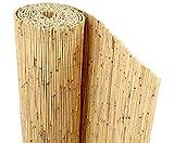 bambus-discount Schilfrohrmatte