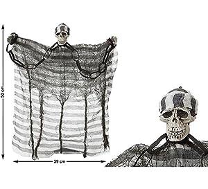 Atosa  - B. Esqueleto 50x39 cm