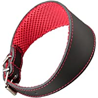 arppe 195376050100 Collar Galgo Cuero Forro 3D Amazone, Negro y Rojo