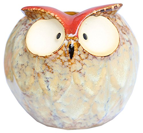 greencherry-delightful-ceramic-wise-old-owl-vase-animal-planter-for-indoor-or-outdoors