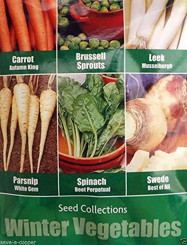Portal Cool 6 1 in Wingemüse Samen-Kollektion Pack 490 Qualitätsgemüsesamen -