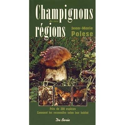 Champignons de nos régions