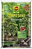 Compo Bonsaierde - 5 Liter