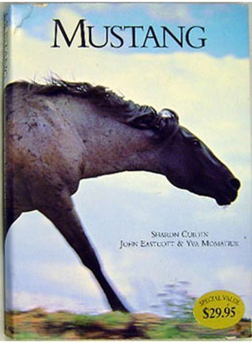 Mustang (American Wildlife in American Spaces) by Sharon Curtin (1996-09-30)