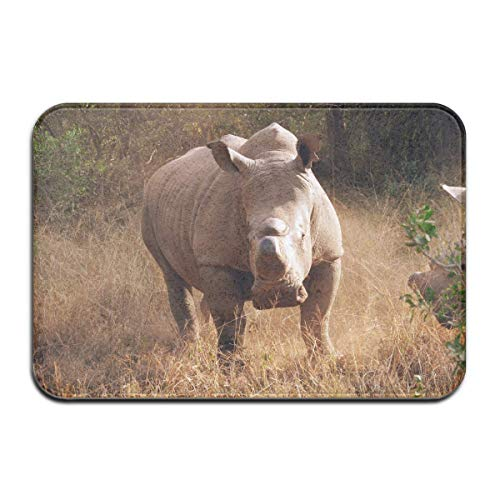 tive Garden Office Bathroom Mat Outdoor, African Funny Rhino Outdoor Rubber Mat Front Door Mats Porch Garage Large Flow Slip Entry Carpet Standard Rug Home 23.62