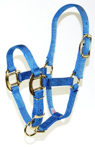 Hamilton Halfter für Pferde, 3/4-Größe, verstellbar, 100 bis 200 kg, beerenfarben