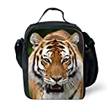 Tiger Lunch Boxes - Best Reviews Guide