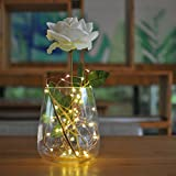 Beauty Lights Copper String Lights 3 AA Battery Operated Portable LED String Lights, Fairy Lights Decoration Party Wedding Diwali Christmas Lights (3 Meters 30 LED)
